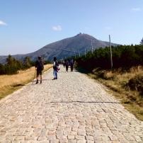 Tak właśnie wyglądają tam główne szlaki. Nienawidzę takich dróg w górach :(